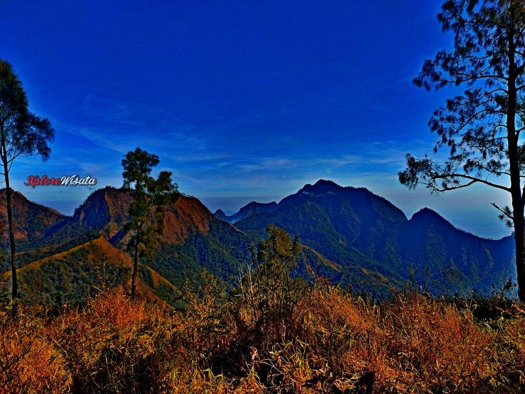 Paket Pendakian Gunung Wilis - Open Trip - Ekonomis - Bisnis (Wisata) - Eksekutif - VIP - VVIP