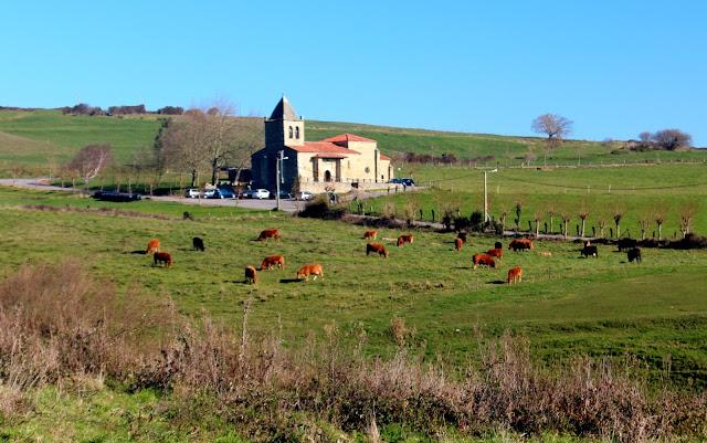 Iglesia entre verdes praderas y vacas