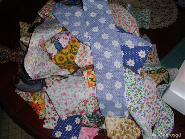 Charo S Patchwork Jelly Roll Quilt Race