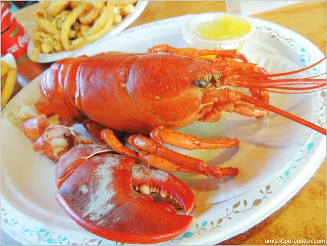 Lobster Shacks en Massachusetts: Langosta del JT Farnham's