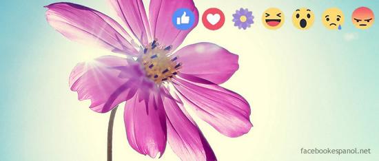 Los nuevos Stikers con los que Facebook celebró el día de las madres