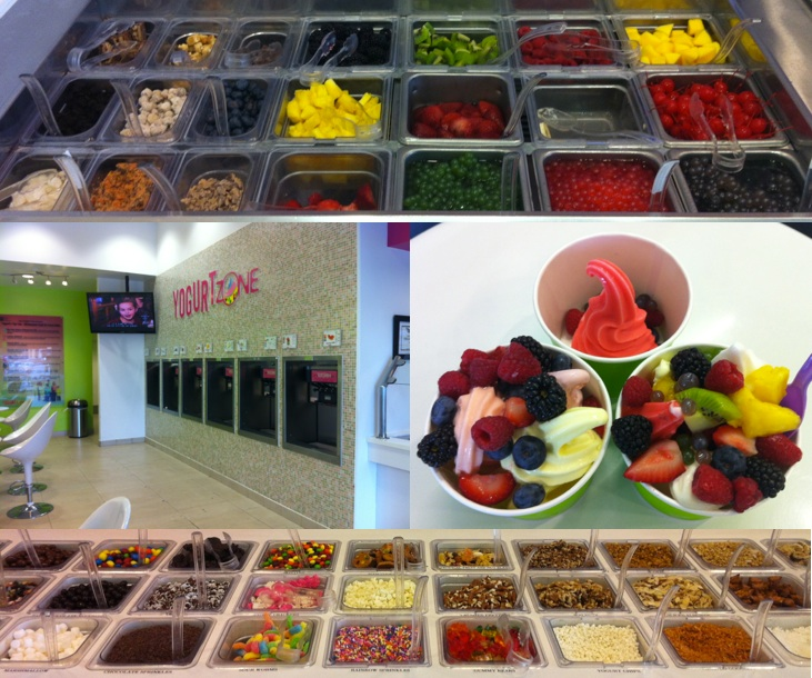 The Knitlit Twit: Froyo Files: Yogurt Zone (Quarry Market