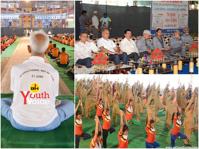 International Yoga Day Camp 2016 - Dera Sacha Sauda, Green S Welfare Force and students doing yoga, डेरा सच्चा सौदा में आयोजित योग शिविर