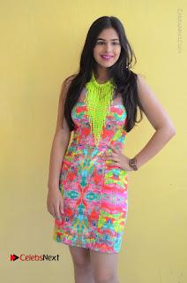 Telugu Actress Prasanna Stills in Short Dress at Inkenti Nuvve Cheppu Press Meet Stills  0022.JPG