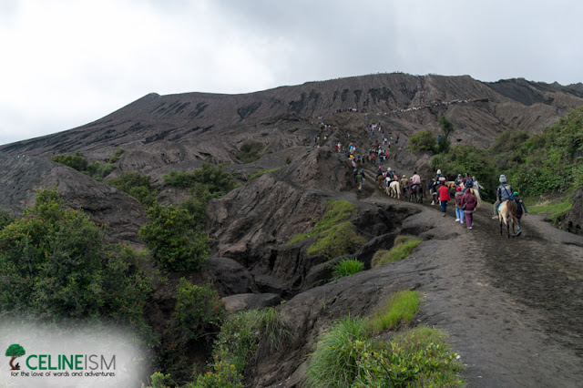 mt bromo crater trail