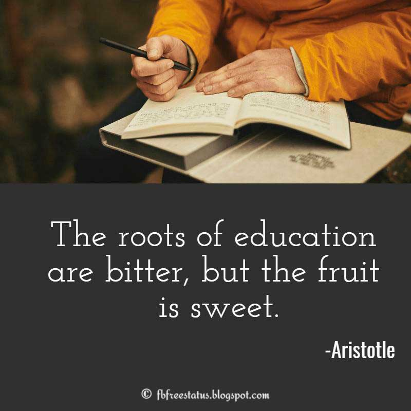 Aristotle Quote: The roots of education are bitter, but the fruit is sweet.