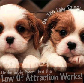 Undeniable Proof That The Law Of Attraction Works: Little Things