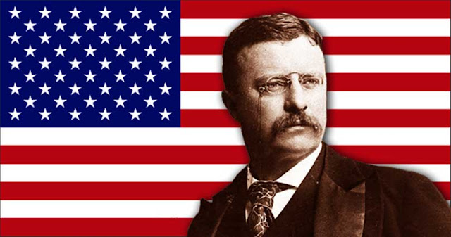 Theodore Roosevelt Biography picture