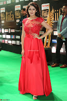 Saisha looks Glamorous Super cute in Transparent Red Gown at IIFA Utsavam Awards 016.JPG