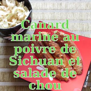 http://danslacuisinedhilary.blogspot.fr/2012/09/aiguillettes-de-canard-marinees-aux.html