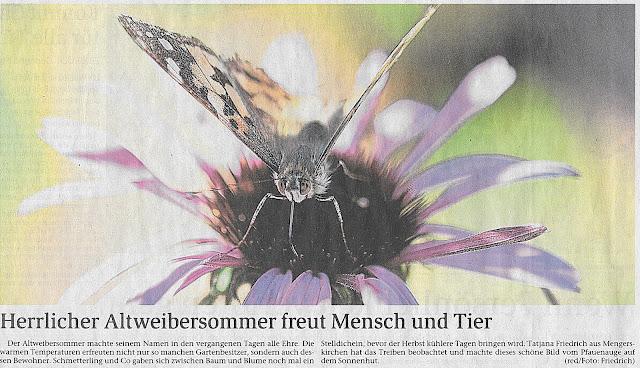 Weilburger Tageblatt Bild