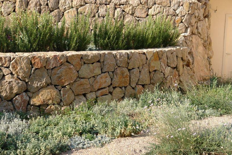 jardin mediterráneo con muro de piedra seca y plantas