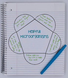 Microorganisms Unit