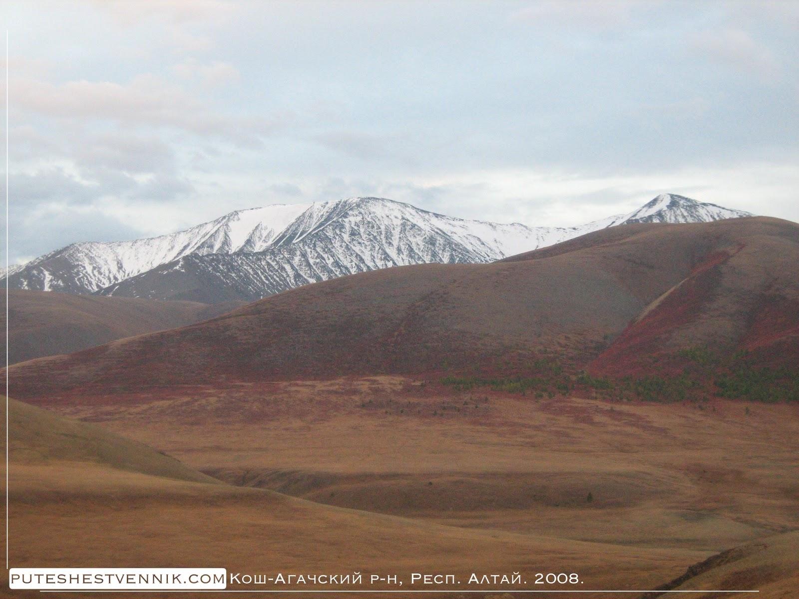 Снежные вершины гор Алтая
