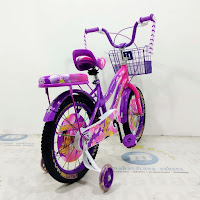 Sepeda Anak Emerson EM9903RM Tread Flower  City Bike