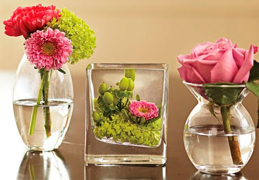 Flowers to Decorate the House 6