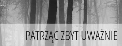 https://patrzac-zbyt-uwaznie.blogspot.com/