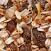 Cereals rich food in carbohydrates