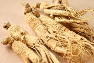 Tratamento natural da menopausa com ervas