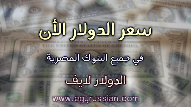 سعر الدولار الأن في جميع البنوك المصرية | محدث لحظة بلحطة