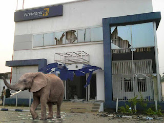 Another Mysterious Elephant Appears In First Bank Nig. – Lagos – Swallows 125Million Live