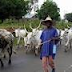 Police avert herdsmen, farmers clash in Bayelsa