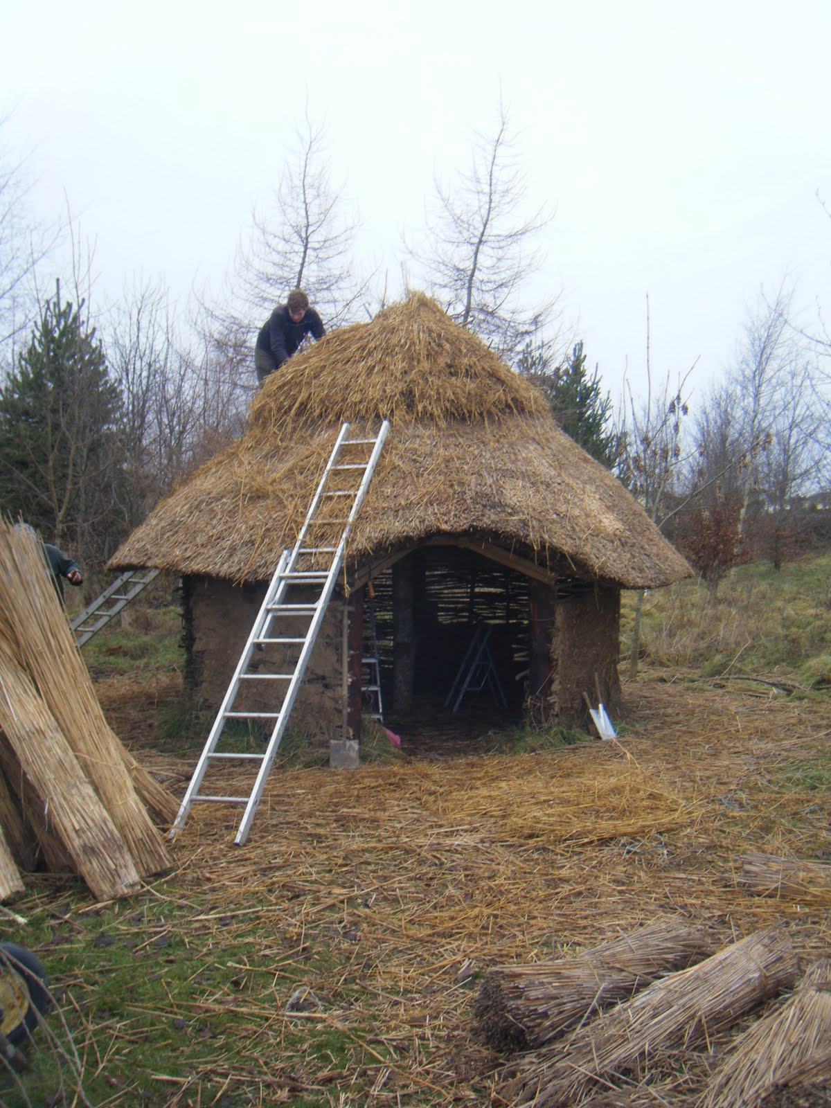 The River Field Thatching