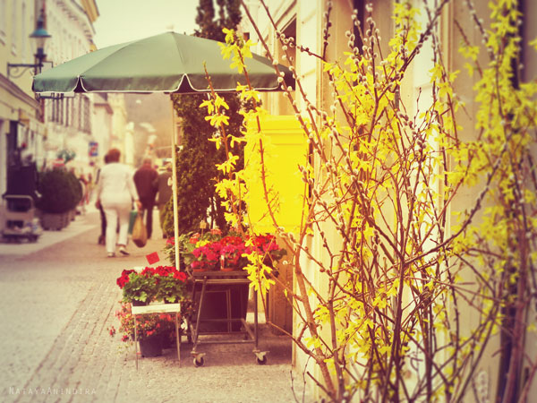 #townstrolling #flowersshop #flowers #colorful #yellow #Sanktpoelten