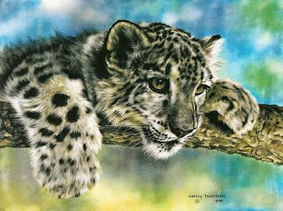 cuadros-animales-pintados-al-oleo