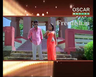 Oscar Movies Hindi / Bhojpuri added on channel no. 075