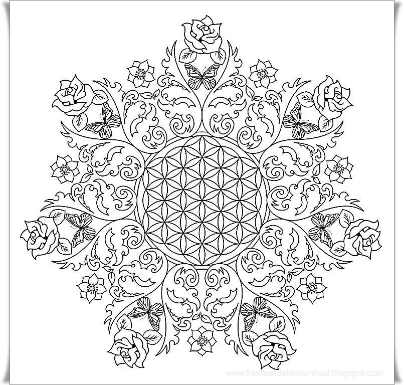 Ausmalbilder für Erwachsene zum Ausdrucken-Gute Qualität - Free Mandala