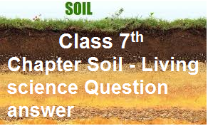 class7 chapter soil living science question answer cbse adda