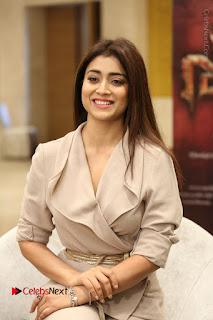 Actress Shriya Saran Stills in Stylish Dress at Gautamiputra Satakarni Team Press Meet  0079.JPG