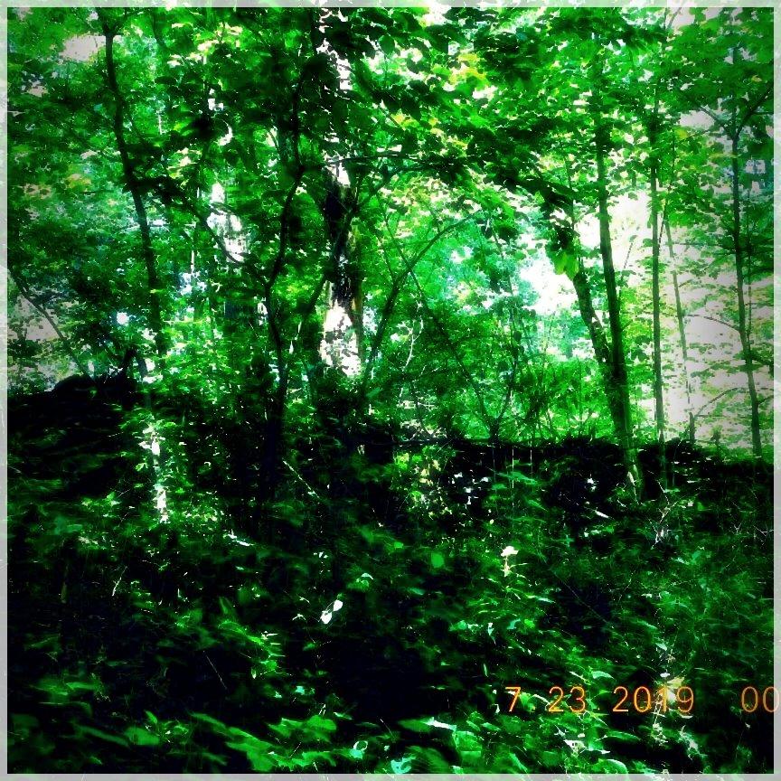 HikingTrails-16464157010