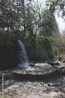 Stroom bij Banias in het Hermon National Park