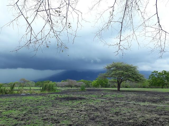 Baluran Banyuwangi