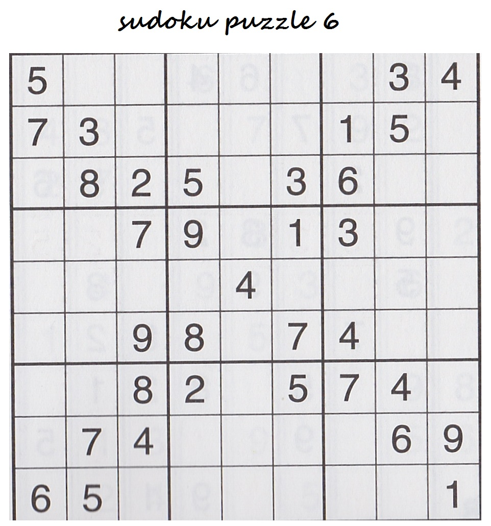 Bonggamom Finds: The Puzzle Baron's Sudoku and Logic Puzzles