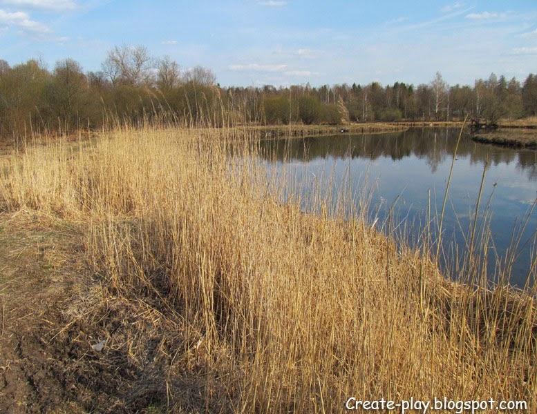 озеро ранней весной