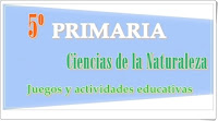 https://www.pinterest.com/alog0079/5o-primaria-ciencias-de-la-naturaleza/