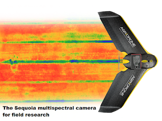 the Sequoia Multispectral Camera Sensor