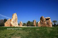Garden of the rocks