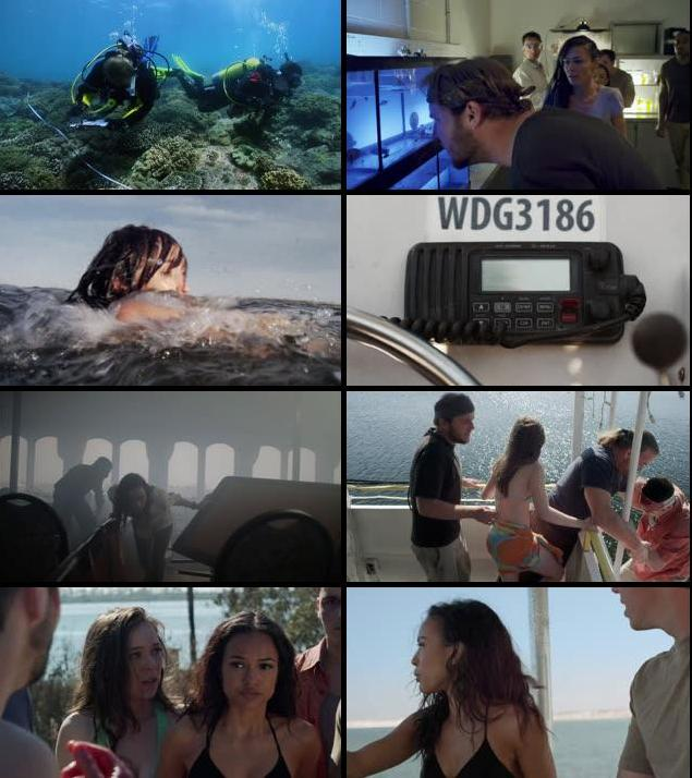3 Headed Shark Attack 2015 UNCUT Dual Audio Hindi 480p BRRip