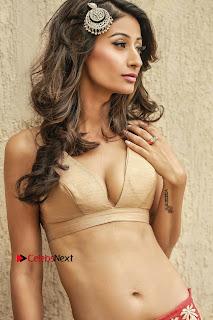 Actress Model Shivalika Sharma Latest HD Portfolio Stills  (3).jpg