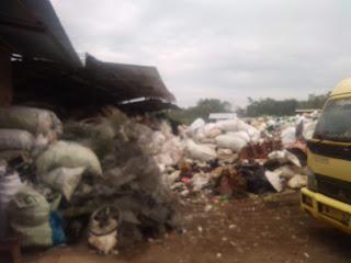 Pengumpul Sampah Anorganik Daur Ulang