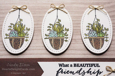 Heart's Delight Cards, Hanging Garden, Friendship, Succulents, Stampin' Up!