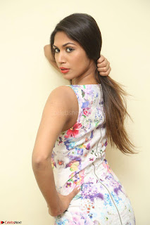 Nishi Ganda stunning cute in Flower Print short dress at Tick Tack Movie Press Meet March 2017 026.JPG