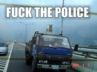 dog on truck fuck the police, dog, funny dog, fuck the police