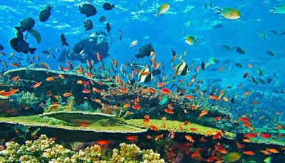 Taman Laut Mandeh