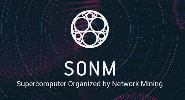A review of SONM (Supercomputer Organized by Network Mining)