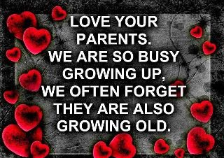 Cute Quotes Collection Love Your Parents Quote